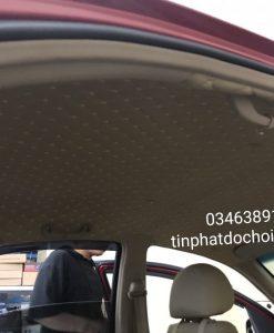 Bọc Trần 5D Xe Wigo