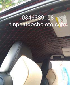 Trần 5D Honda City